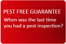 Pest Free Guarantee